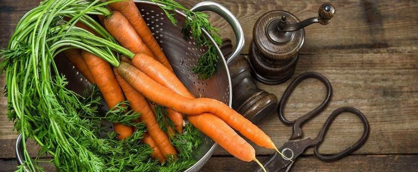 40-dagen-zonder-vlees-tips-post