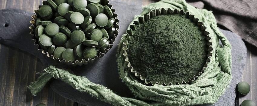 algues-vegetal-post