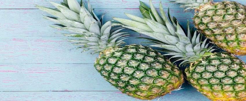 ananas-leder-milieuvriendelijke-trend-post