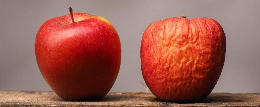 fruits-legumes-perimes-post