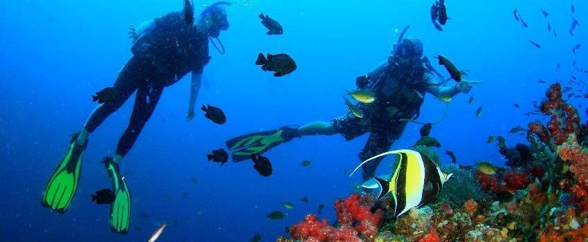 les-plus-beaux-recifs-coralliens-du-monde-post