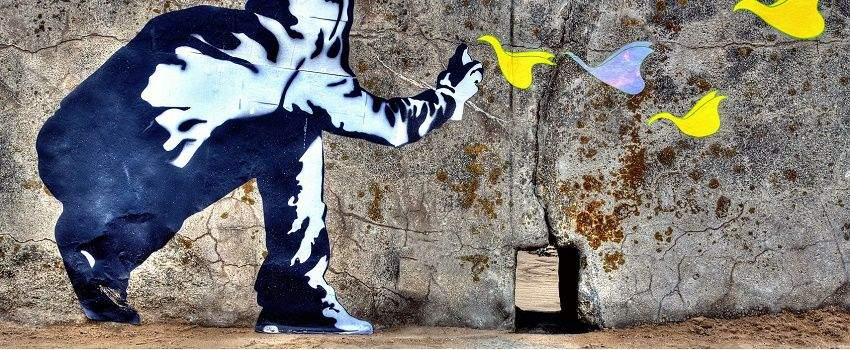 nature-collabore-street-art-post
