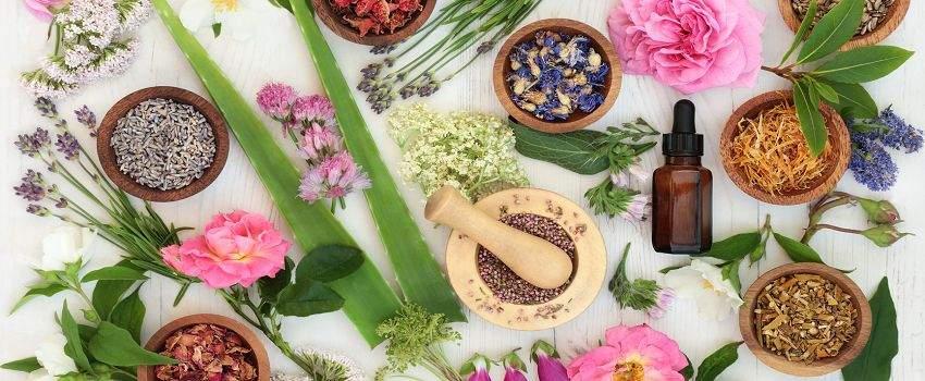 natuurlijke-verzorging-dankzij-fytotherapie-post