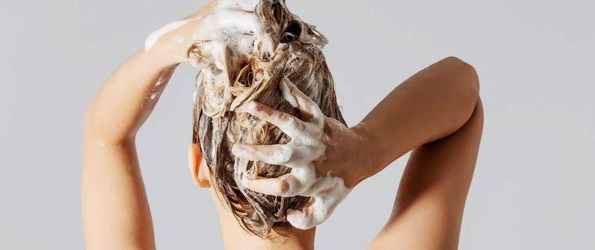 no-poo-zero-shampoing-post