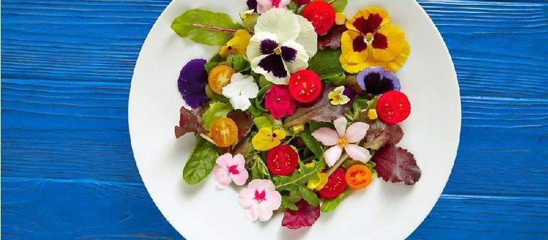 tendance-manger-des-fleurs-post