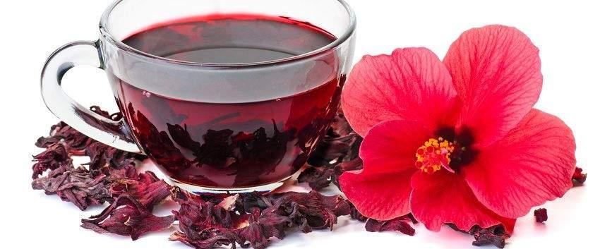 utilisations-fleur-hibiscus-post