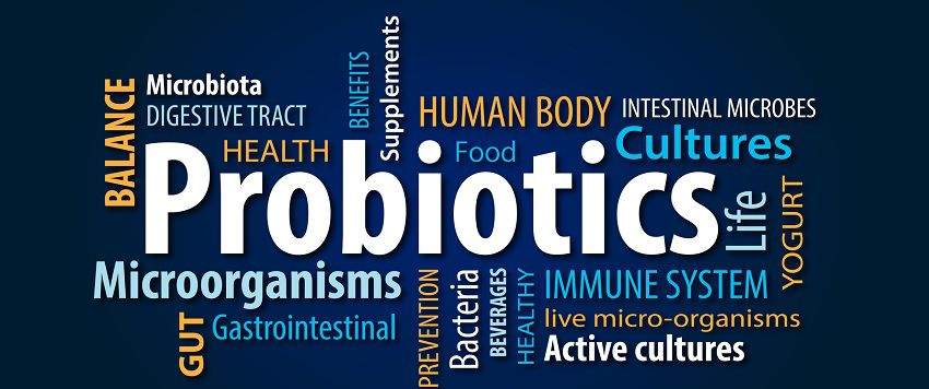 zoom-probiotiques-post